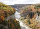 Deals & Discounts in the Finger Lakes!