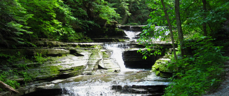 Finger Lakes Parks