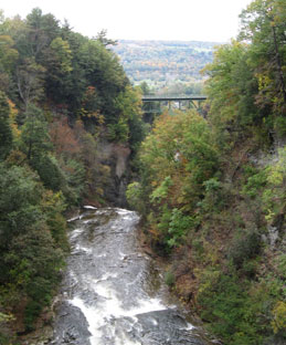 Downstream View of Fall Creek Gorge from Suspension Bridge