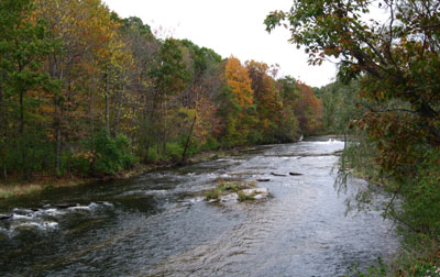 Fall Creek near Cornell Plantations by Len Dawson